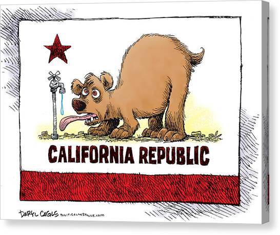 Canvas Print featuring the drawing Thirsty California Flag by Daryl Cagle