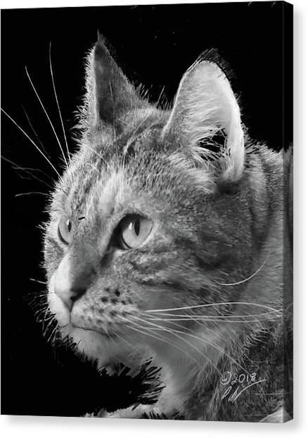 This Is Emma Canvas Print