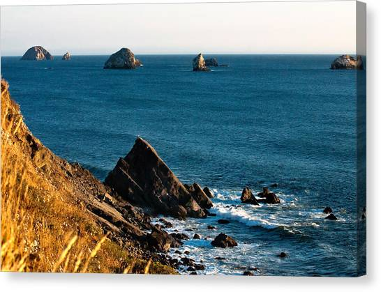 Oregon State Canvas Print - This Is Oregon State 1 - The Oregon Coast by Paul W Sharpe Aka Wizard of Wonders