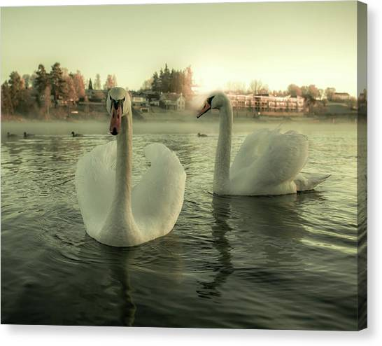 This Is Purity And Innocence Canvas Print