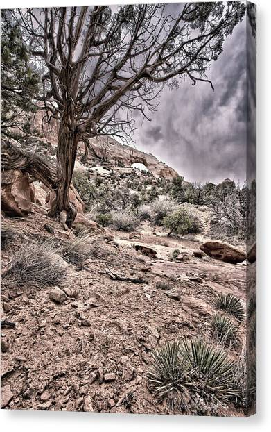 This Is Utah No. 9 - Morning At Williams Arch Canvas Print by Paul W Sharpe Aka Wizard of Wonders