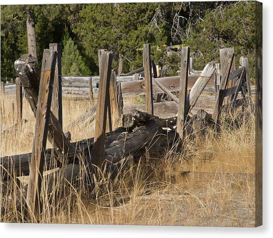 This Old Fence Canvas Print by Charlie Osborn