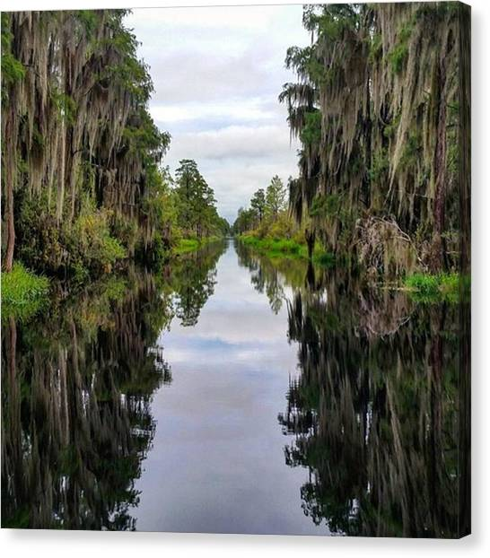 Okefenokee Canvas Print - This Was My Favorite View Of The by Karen Breeze