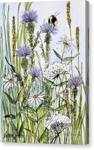 Thistles Daisies And Wildflowers Canvas Print