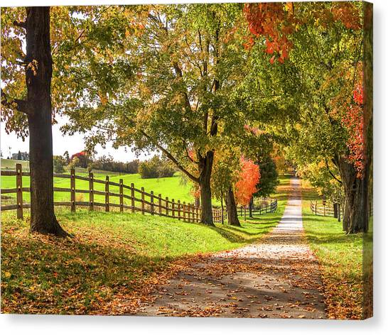 Thomas Farm Lane Canvas Print