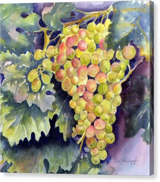 Thompson Grapes Canvas Print