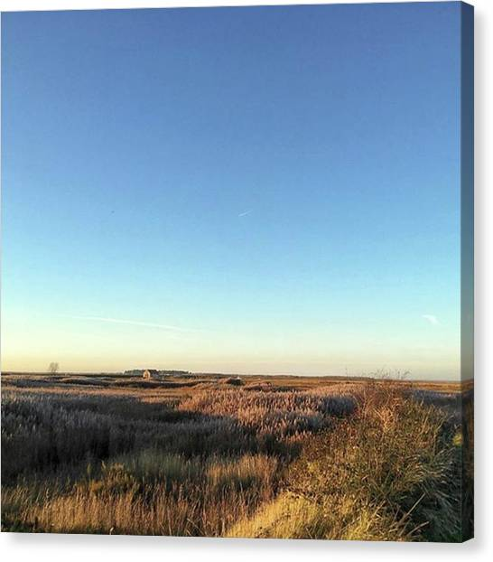 Landscape Canvas Print - Thornham Marsh Lit By The Setting Sun by John Edwards