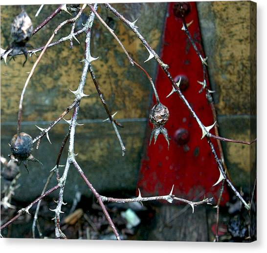 Thorns And Red Triangle Canvas Print