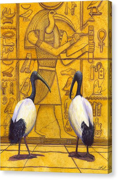 Ibis Canvas Print - Thoth by Catherine G McElroy