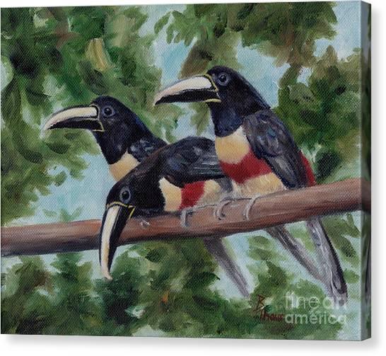 Three Amigo's Canvas Print