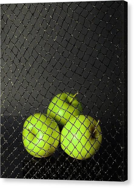 Three Apples Canvas Print by Viktor Savchenko