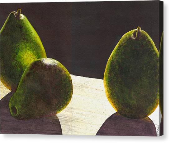 Three Backlit Canvas Print by Catherine G McElroy