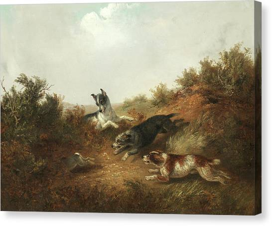 Three Pointer Canvas Print - Three Dogs Chasing A Rabbit Down A Hole by Thomas Smythe