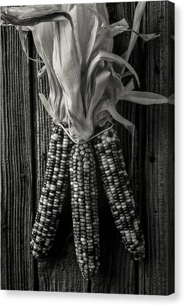 Indian Corn Canvas Print - Three Indian Corn In Black And White by Garry Gay