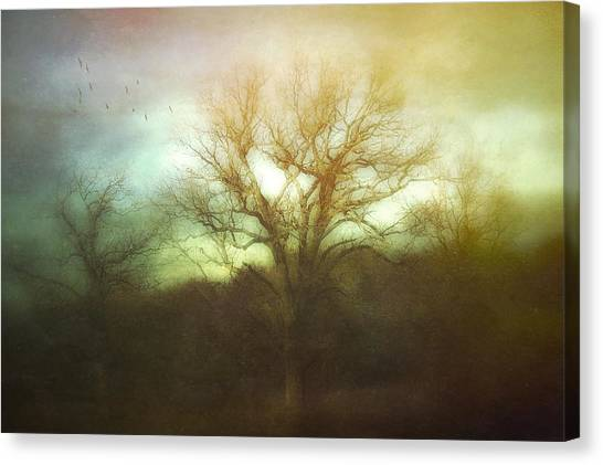 Three Is A Magic Number Canvas Print
