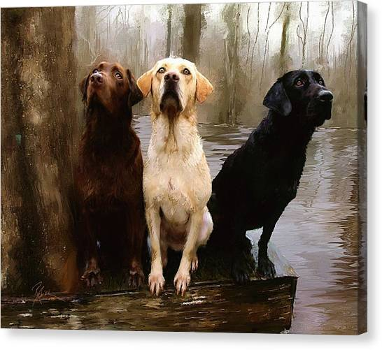 Swamps Canvas Print - Three Labs by Robert Smith