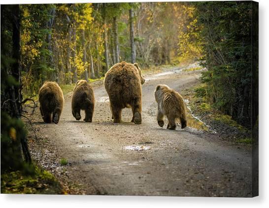 Alaska Canvas Print - Three Little Bears And Mama by Chad Dutson