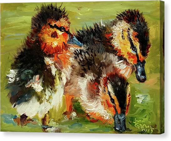 Three Little Ducks Canvas Print
