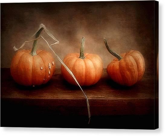 Three Little Pumpkins Canvas Print