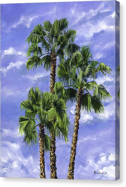 Three Palms Canvas Print