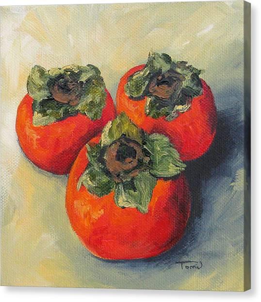 Three Persimmons Canvas Print