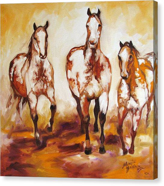 Three Pinto Indian Ponies Canvas Print by Marcia Baldwin