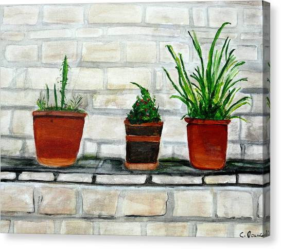 Three Pots Canvas Print by Cathy Jourdan