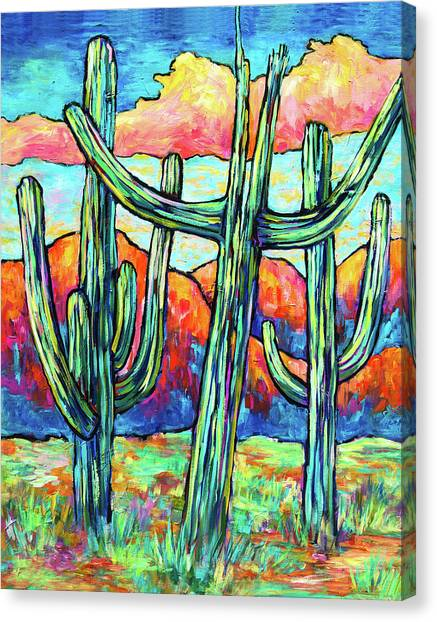 Three Saguaros Canvas Print