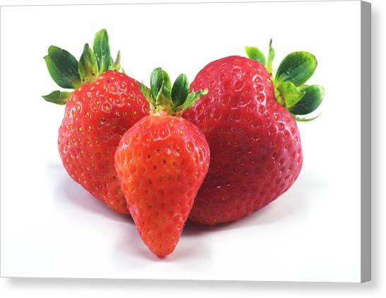 Three Strawberries Canvas Print