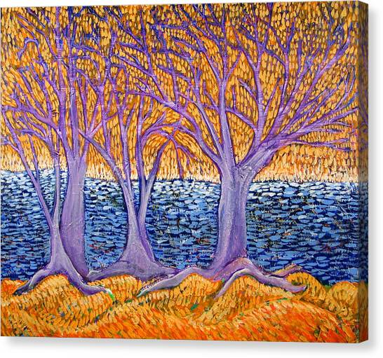 Three Trees Canvas Print by Rollin Kocsis