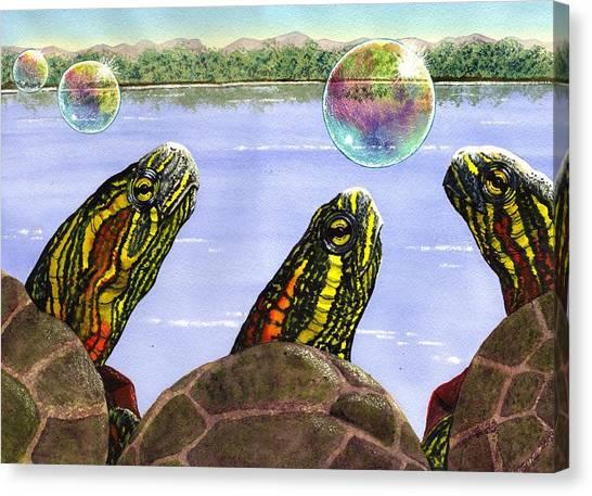 Three Turtles Three Bubbles Canvas Print
