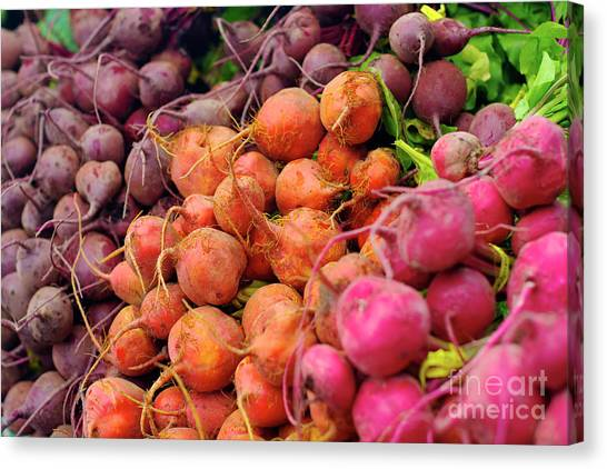 Three Types Of Beets Canvas Print
