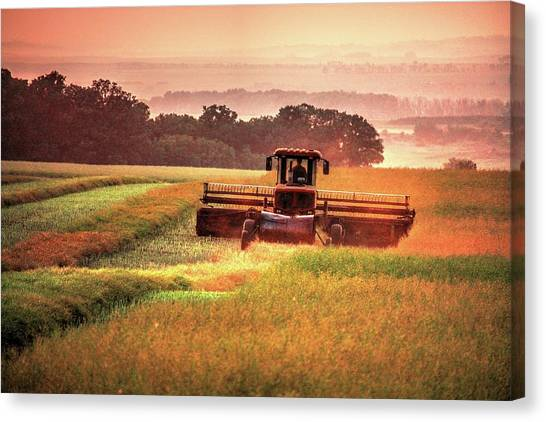 Swathing On The Hill Canvas Print