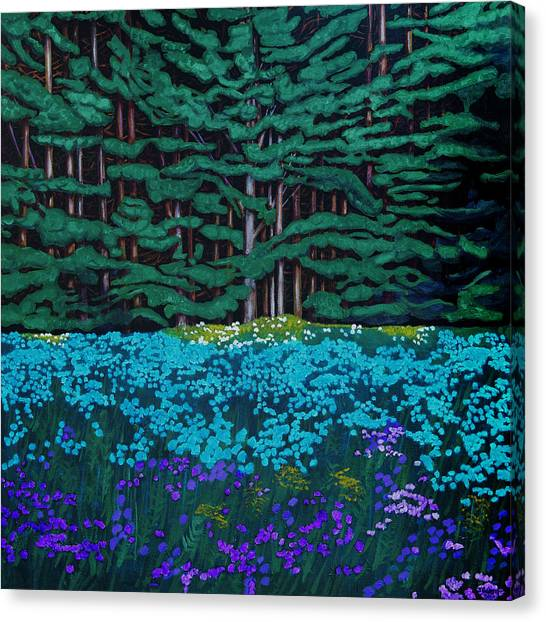 Threshold Of The Woods Canvas Print