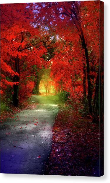 Through The Crimson Leaves To A Golden Beginning Canvas Print