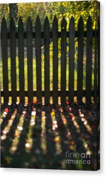 Through The Fence Canvas Print by Hideaki Sakurai