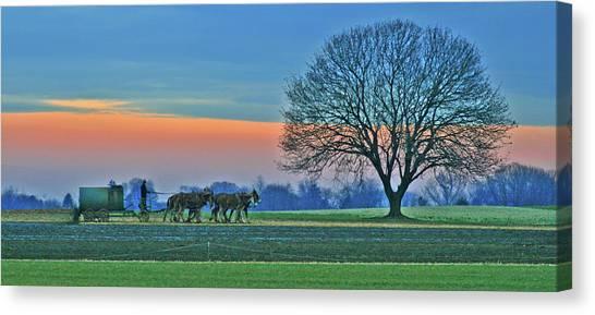 Through The Fields Canvas Print