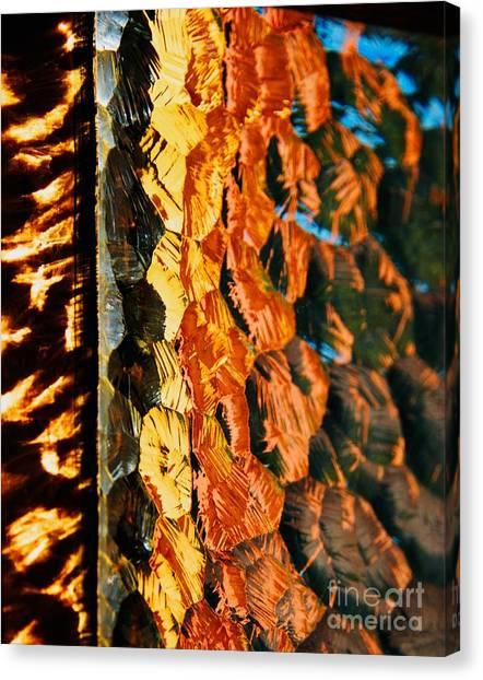 Through The Glass Canvas Print by Hideaki Sakurai