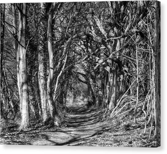 Through The Tunnel Bw 16x20 Canvas Print