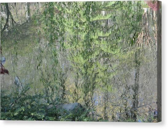 Through The Willows Canvas Print