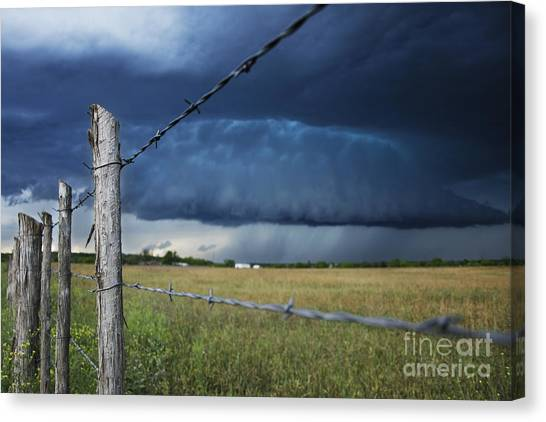 Through The Wires Canvas Print