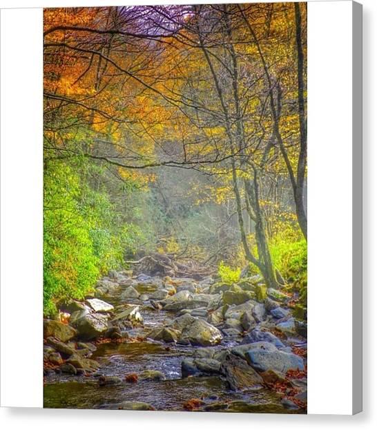 Autumn Leaves Canvas Print - Rocky River by Morgan Stoun