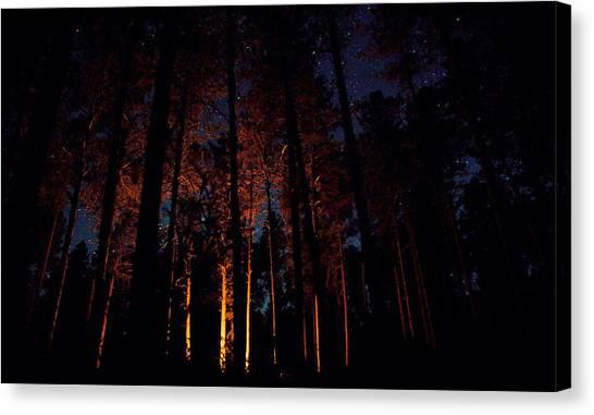 Thru The Dark Canvas Print