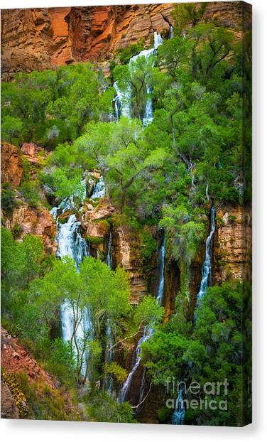 Splashy Canvas Print - Thunder River Oasis by Inge Johnsson