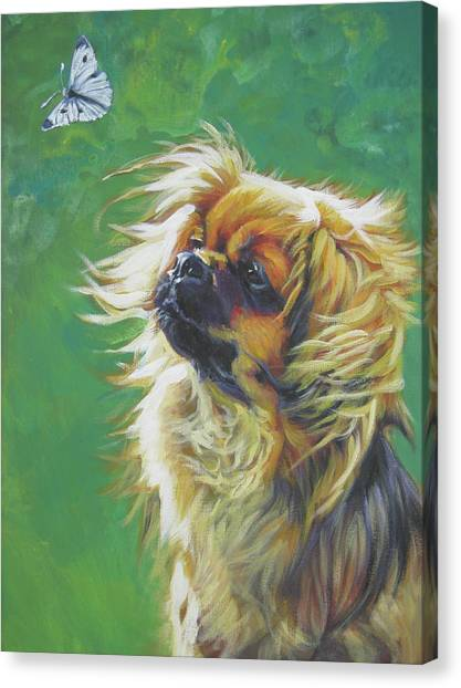 Cabbage Canvas Print - Tibetan Spaniel And Cabbage White Butterfly by Lee Ann Shepard