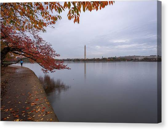 Tidal Basin In Fall Canvas Print by Michael Donahue