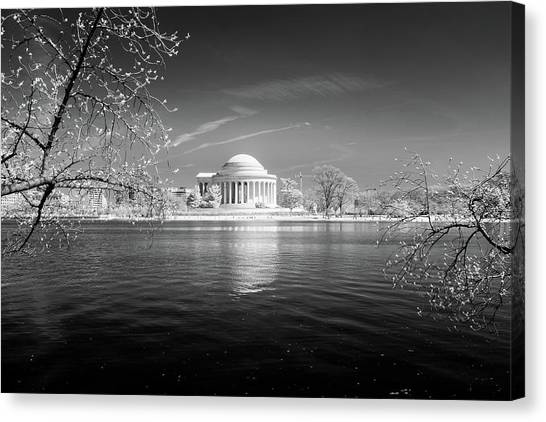 Tidal Basin Jefferson Memorial Canvas Print