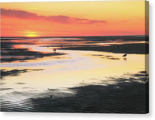 Tidal Flats At Sunset Canvas Print