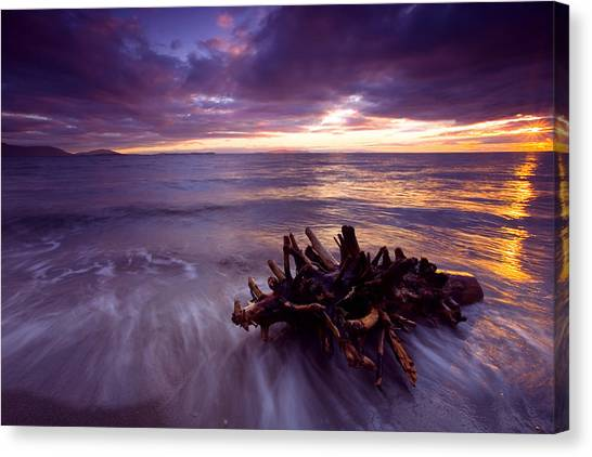 Tide Driven Canvas Print