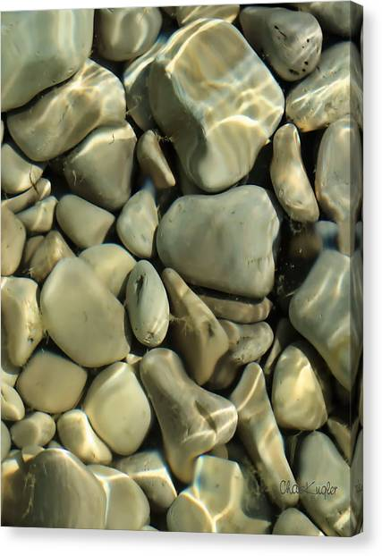 Tide Pool Canvas Print by Chuck Kugler